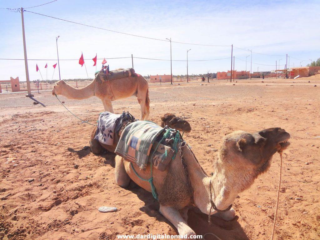 MHamid El Ghizlane Morocco