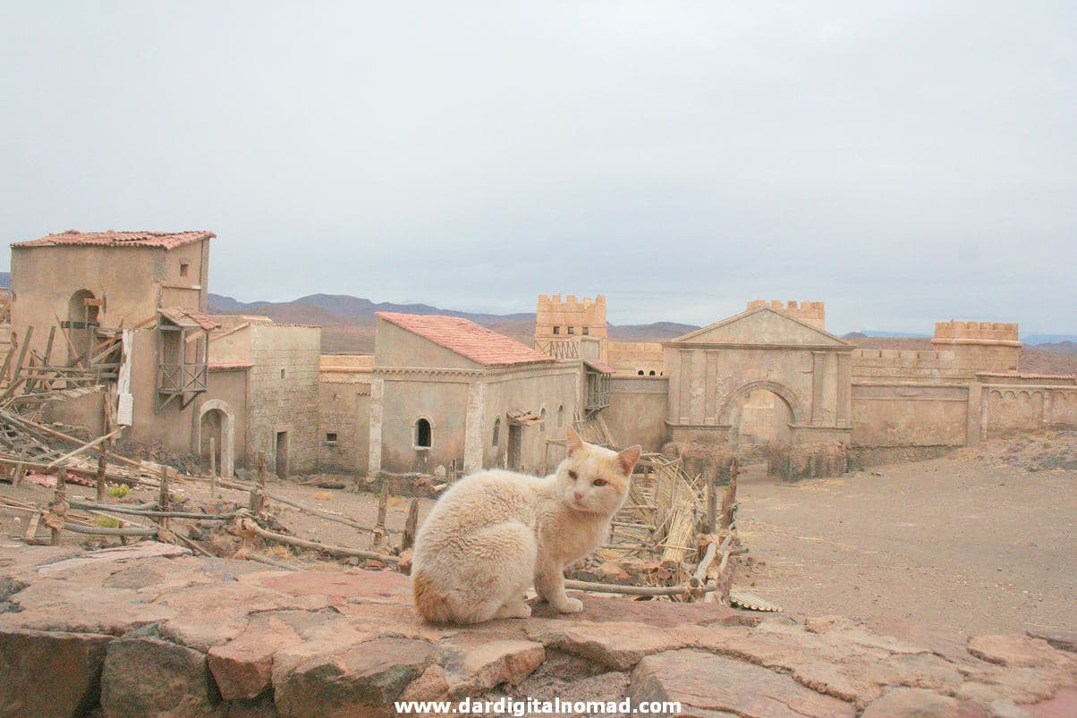 Ouarzazate City Guide & Drâa-Tafilalet Region Coworking & Coliving Space in Morocco